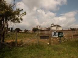 Terreno para alugar em Butiatuvinha, Curitiba cod: *