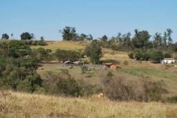 Fazenda 45 alqueires em Limeira-SP na Rodovia dos Bandeirantes