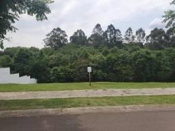 Terreno à venda em Colonia dona luiza, Ponta grossa cod:V4409
