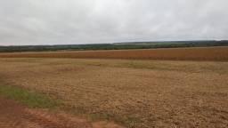 Fazenda 104 alqueires - pecuária - beira do Rio - Sud Menucci - F210402