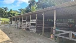 Título do anúncio: Chácara à venda no bairro Jardim Nova Limeira, em Limeira