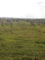 Vendo ou Troco Área Rural em Caarapó