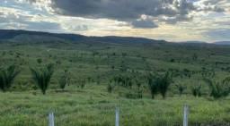 Título do anúncio: Fazenda/Sítio/Chácara