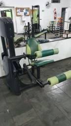 Cadeira Flexora 110 kg