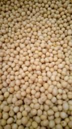 Variedade de soja fiscalizado