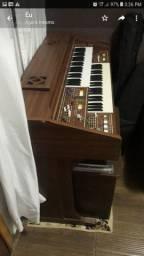 Órgão eletrônico whats *