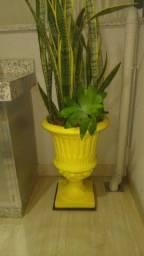 Vendo dois vasos de concreto com planta natural!!!