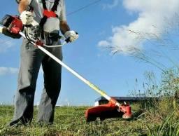 Limpeza de terrenos e pintura