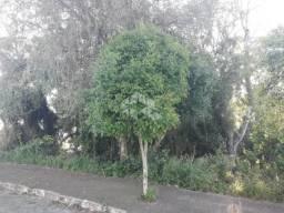 Terreno à venda em Santa marta, Bento gonçalves cod:9908768