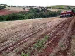 Fazenda à venda, 1476200 m² por R$ 7.000.000 - Centro - Guaraniaçu/PR