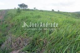 Título do anúncio: Vendo Fazenda com 143 hectares em Pernambuco