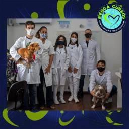 Curso Profissionalizante de Auxiliar de veterinário