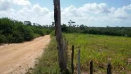 Granja Riachão 16.5 Hectares, Nascente, 4 Baias, 2 Casas, Área de Lazer completa, Piscina