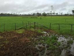 Propriedade para implantação de condomínio, criação de gado, soja, milho, piscicultura