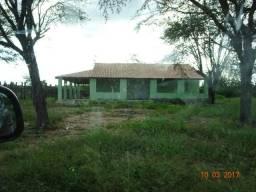 Fazenda 786 hectares