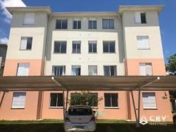 8447   Apartamento para alugar com 2 quartos em Jardim Jockey Club, Londrina