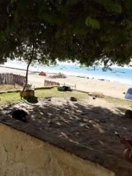 Vendo propriedade em praia de Redonda/ICAPUI-CE