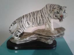 Tigre de Resina