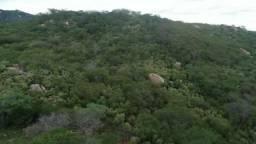 Vendo Sitio a 6km de Monteiro