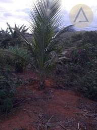 Terreno à venda, 870 m² por r$ 150.000 - quilombo - cantagalo/rj
