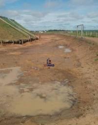 Fazenda à venda por R$ 12.000.000 - Zona Rural - Chupinguaia/RO
