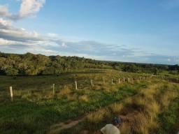 Fazenda na Estrada de Boca do Acre