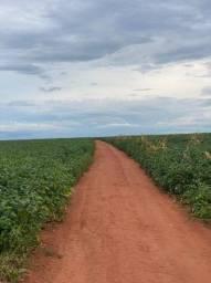 Título do anúncio: Fazenda 1530 hectares na região de São José do Rio Claro - MT