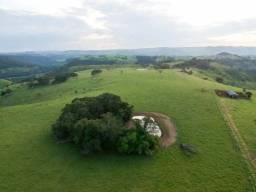 WM- Fazenda em Rondonia
