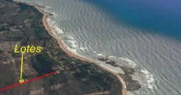 Terreno Exclusivo na Praia de Taipu de Fora Piscinas Naturais Barra Grande Maraú