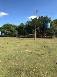 Fazenda com 500 hectares na MT 010