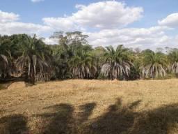 Oportunidade de investimento a 20 km de Goia?nia (GO 020) Areá rural 12 alqueires
