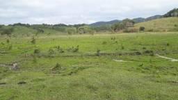 Fazenda 60 alqueires (Willian Ricardo)