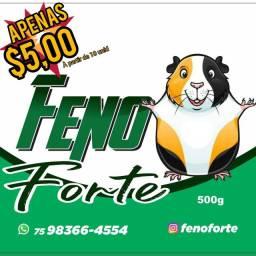 FENOFORT - SUPER PRÊMIO PARA PORQUINHO DA ÍNDIA