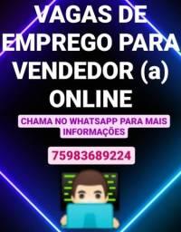 Vendedor (a) on-line