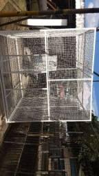 Viveiro gaiolao canil