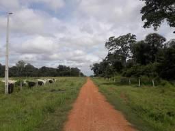 Fazenda 3500Ha - Ribeirão Cascalheira / Agua Boa