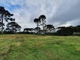 Sitio com 5 hectares em Urubici