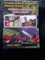 Prestação serviço de jardinagem em geral poda de árvore