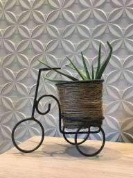 Bicicleta para planta !