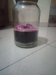 Título do anúncio: Potes de vidro 3l- Artesanato