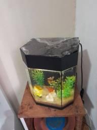 Título do anúncio: Aquário 6 litros com luminária sem peixes e enfeites