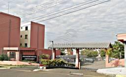 Apartamento para alugar com 3 dormitórios em Colonia dona luiza, Ponta grossa cod:2424