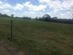 Fazenda de pecuária
