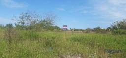 Título do anúncio: Terreno à venda, 1 m² por R$ 568.000 - Nova Palhoça - Palhoça/SC