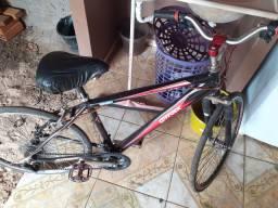 Bicicleta (bike)