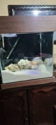 Aquario com sump cubo