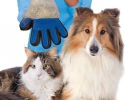 Título do anúncio: Luvas Remoção de Pelos cães e Gatos