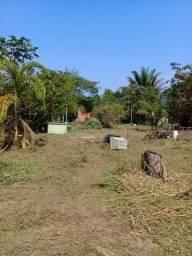 Vendo 2 terrenos na dias Martins km 6 ipê em frente ao viveiro de mudas da ufac