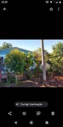 Casa 90 m2 em Terreno 660 m2 + Árvores frutíferas + Plantações