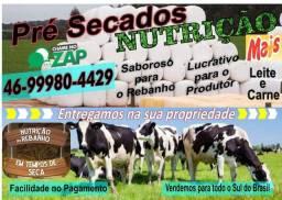 Bolas para Nutrição Animal